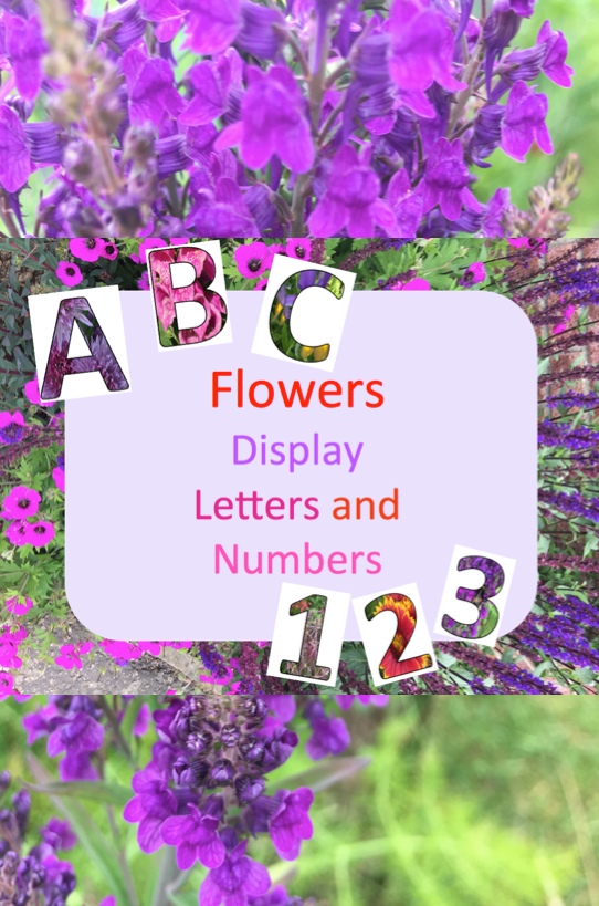 Flowers Display Letters and Numbers -   6 planting Flowers eyfs ideas