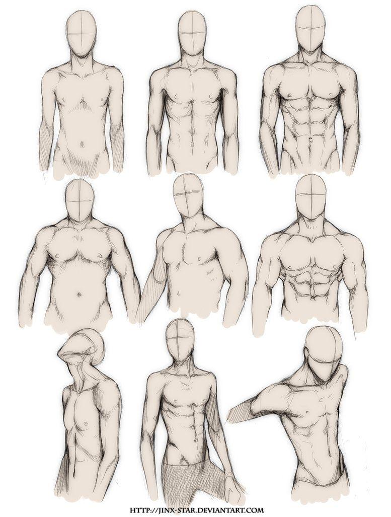 Tipo de cuerpo (masculino) | Anatomia | Pinterest | Bocetos, Tipos ...