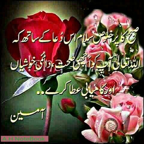 السلام عليكم ورحمة الله وبركاته ص بح ب خیر اے ایچ ن وٹ ب ک Beautiful Morning Messages Good Morning Flowers Good Morning Greetings