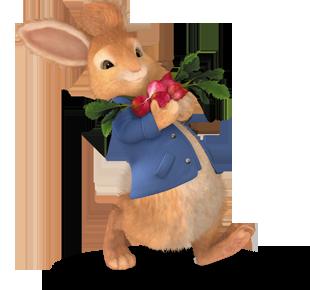 Peter Rabbit Peter Rabbit Club Peter Rabbit And Friends Peter Rabbit Peter Rabbit Party