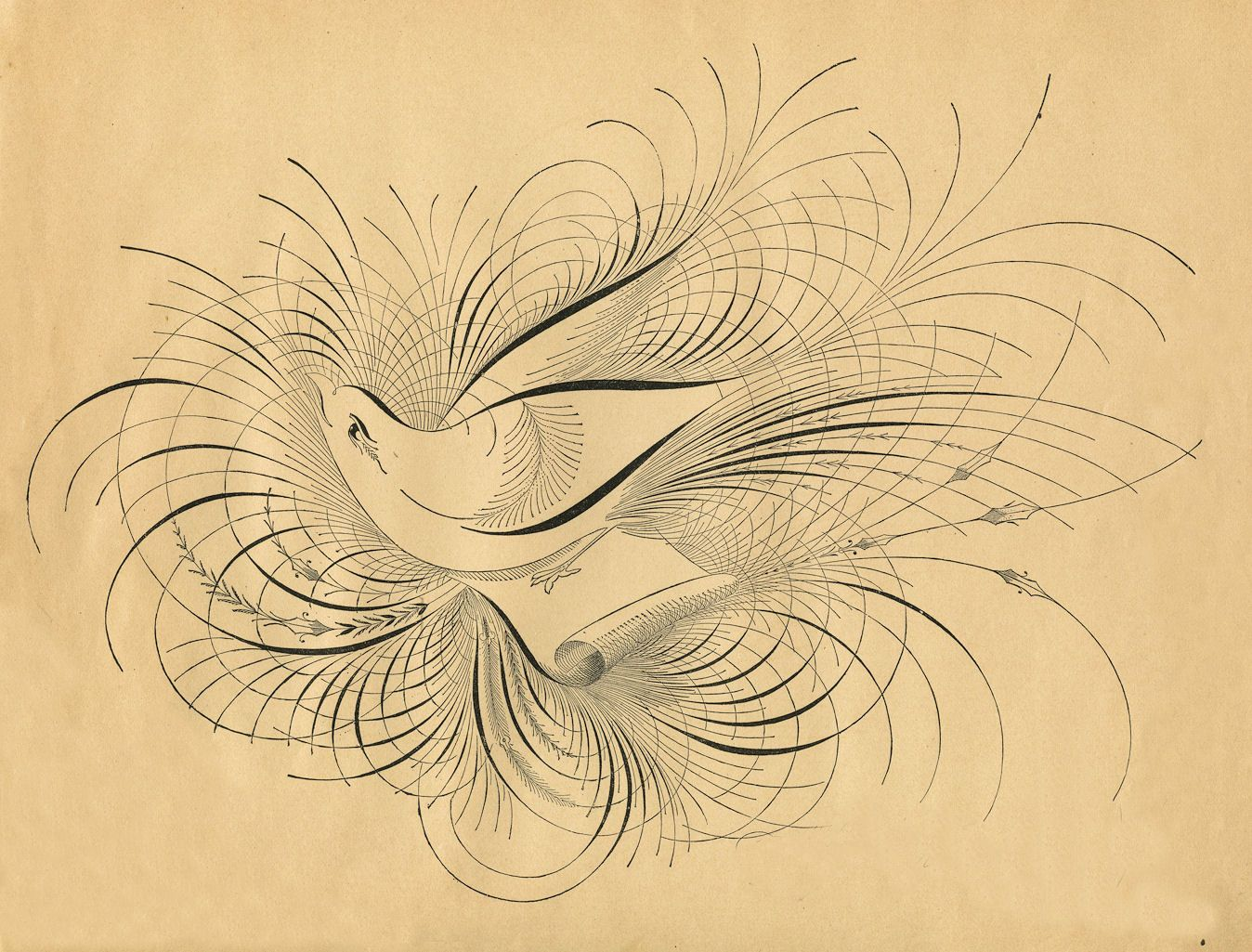 Pen Flourished Bird.  I have a calligraphy piece similar to this in my bathroom.  <3