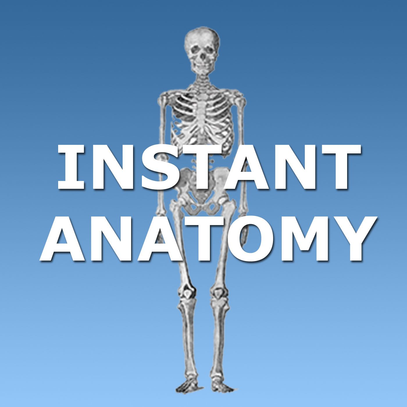 Instant Anatomy Podcast   Listen   Pinterest   Anatomy