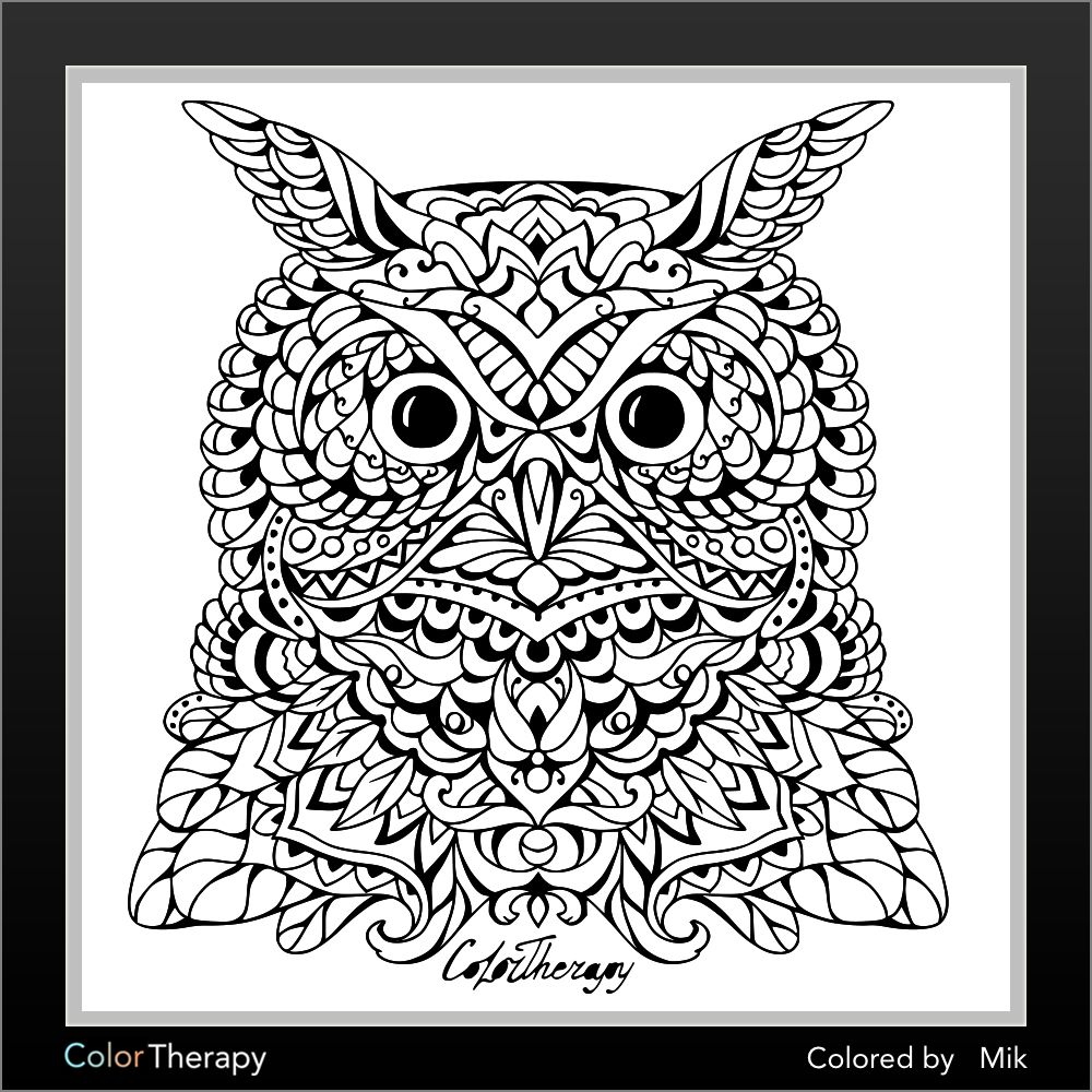 ColorTherapy   coloring pages   Pinterest   Owl