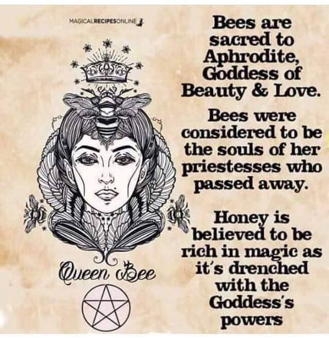 Pin By Isidora On Wicca Witches Wisdom Pinterest Madre
