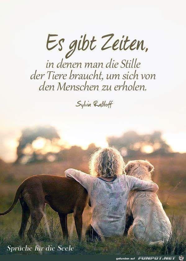 10 beautiful sayings and wisdom from   - Zitate - #beautiful #Sayings #wisdom #Zitate