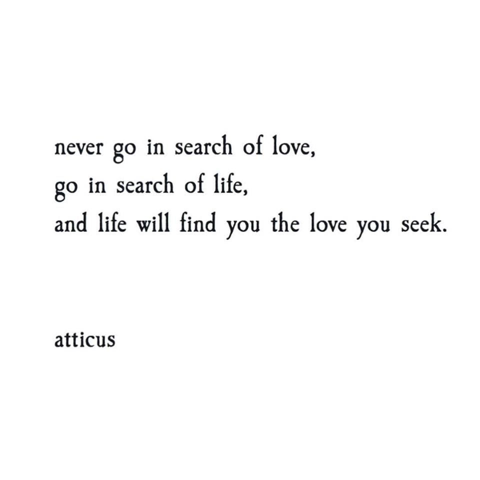 Search Love Quotes Never Go In Search Of Love Go In Search Of Life And Life Will
