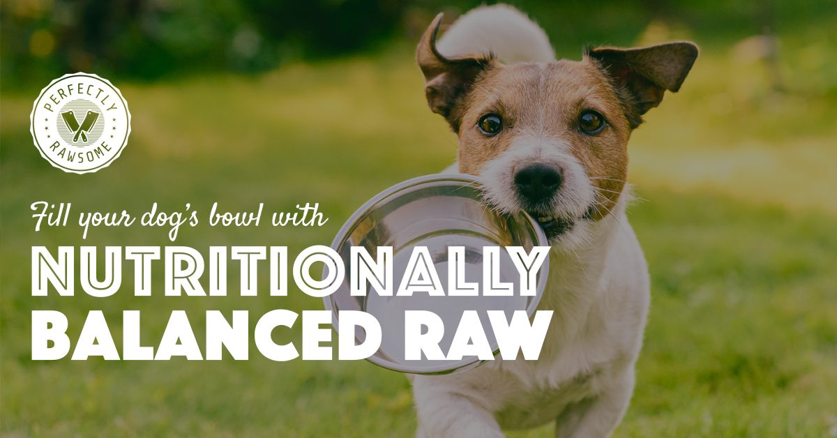 Raw Feeding Puppy Guides, Puppy Nutritional Requirements