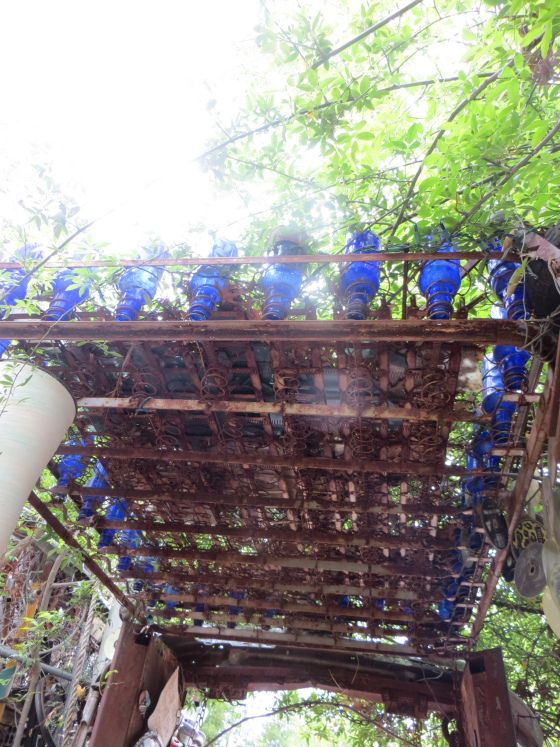 Old Mattress Springs Blue Bottles And Sunshine A
