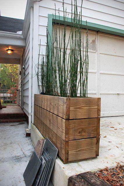 Horsetail reed + recycled wood | Madera reutilizada, Jardineras y Cañas