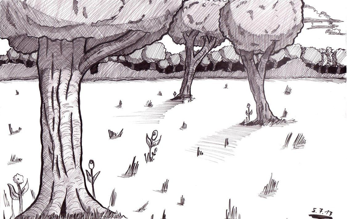 how to draw a realistic forest - | Coloring Pages | Pinterest ...