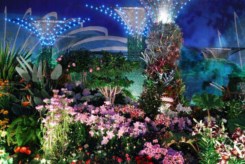 Landscape N Fantasy Garden 29 By Inckurei On Deviantart Garden Pictures Garden Garden Design