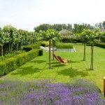 Tuin-ontwerp.eu: Tuinarchitect Rik Hiergens   budgetvriendelijk tuinontwerp, tuinplan en tuinadvies   Tuinarchitect Rik Hiergens   tuinontwerp / tuinplan en tuinadvies