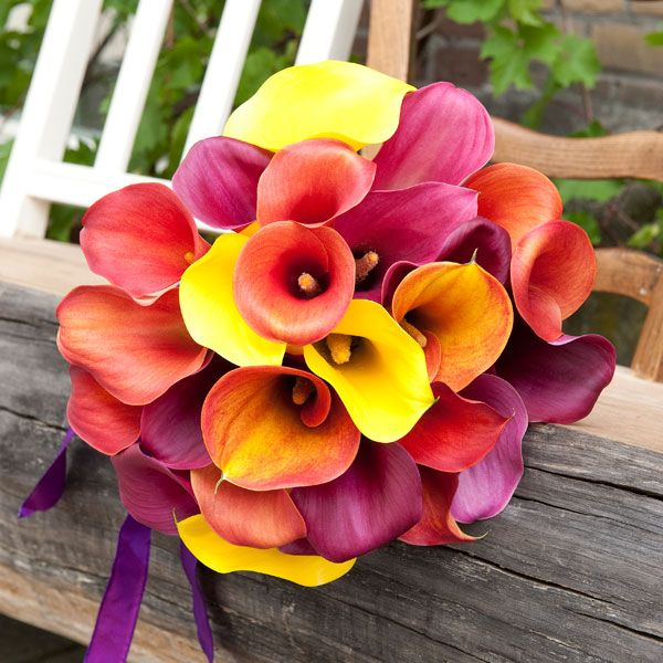 Fabulous Flowers for Fall Weddings | Wedding, Flower and Bouquets