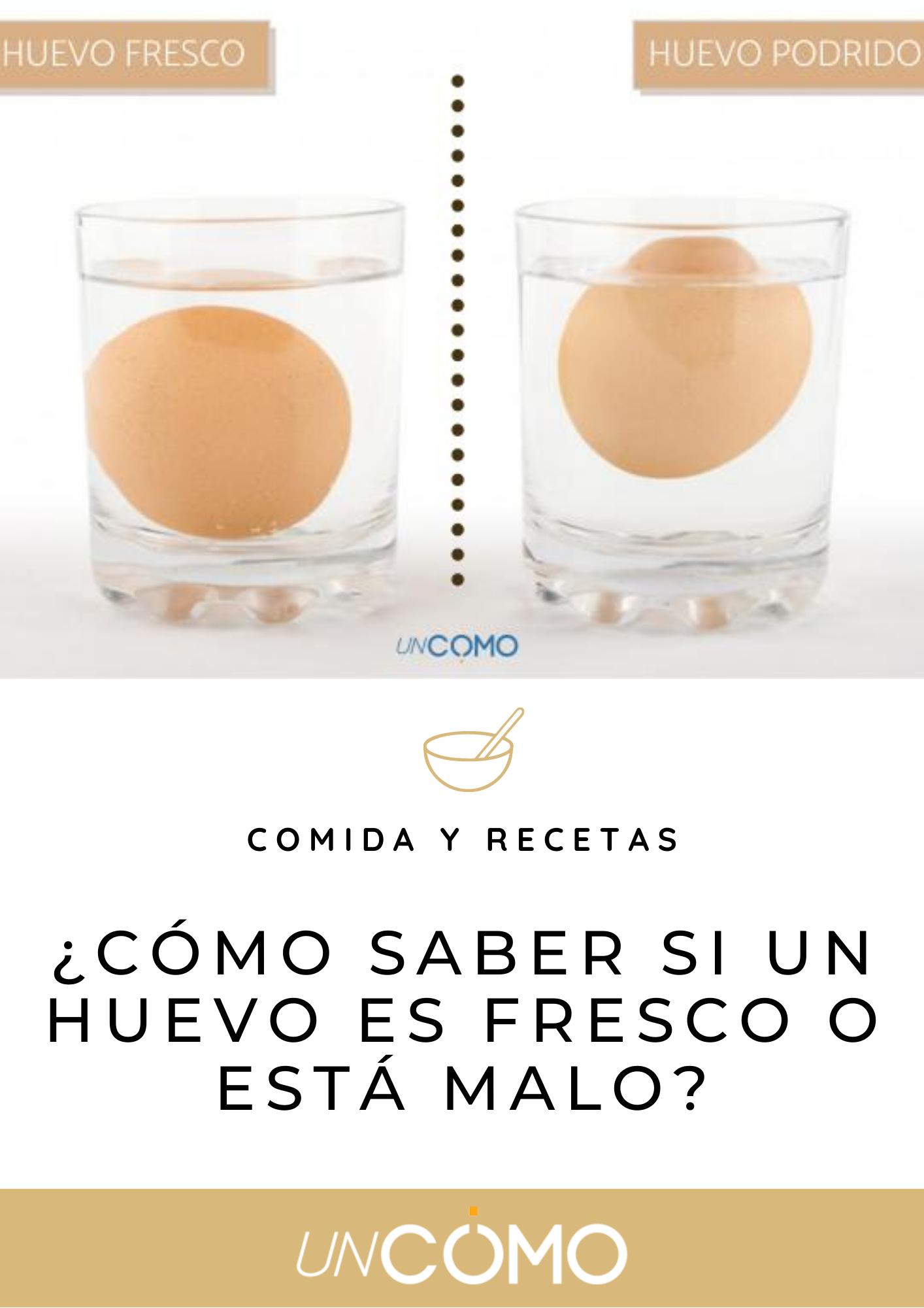 Cómo Saber Si Un Huevo Es Fresco Huevo Huevos Frescos Fresco