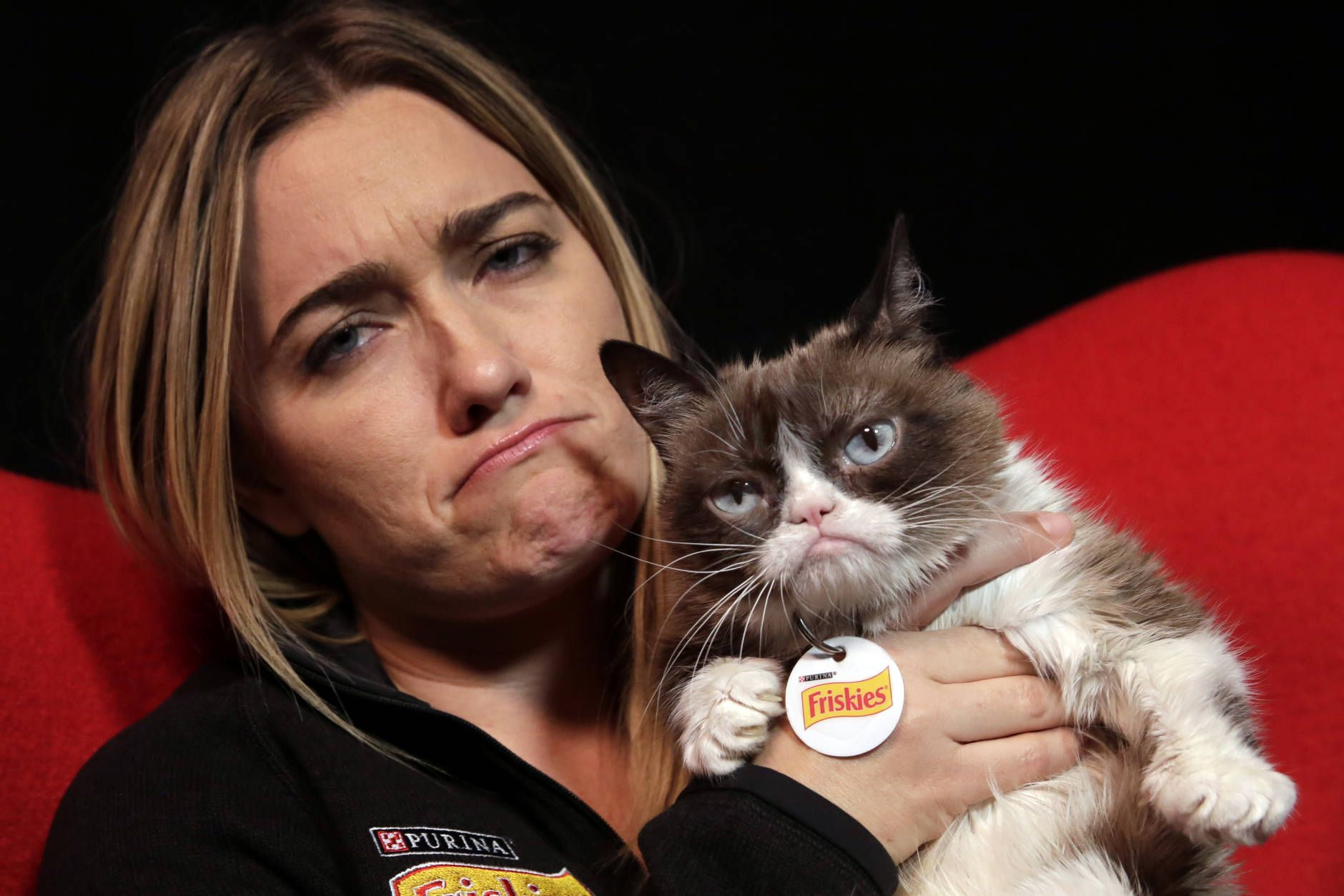 Grumpy Cat, grouchyfaced furball that launched a thousand