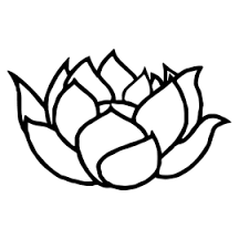 Resultado de imagen para flor del loto