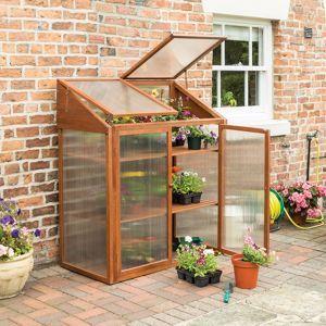Rowlinson Hardwood Mini Greenhouse Lean To Greenhouse Mini Greenhouse Small Greenhouse