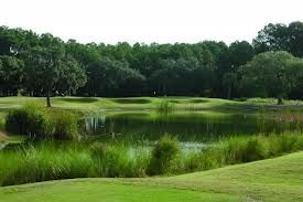 26+ Bear creek golf course hilton head sc info