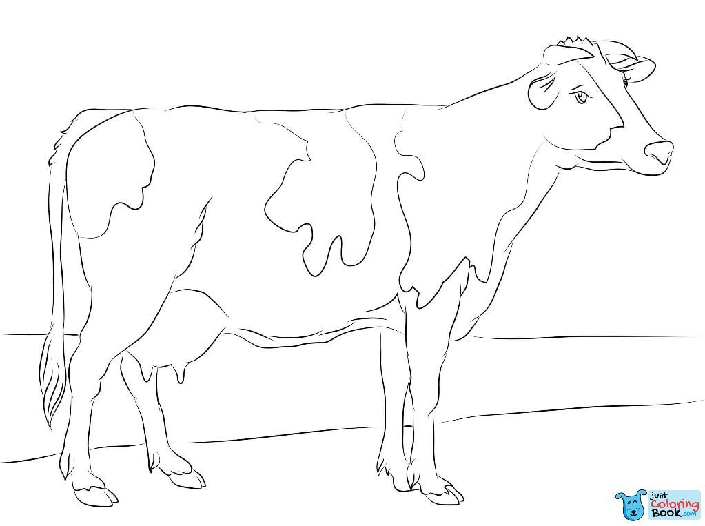 Holstein Cow Coloring Page Free Printable Coloring Pages Throughout Holstein Cow Coloring Pages Cow Coloring Pages Cow Colour Animal Coloring Pages