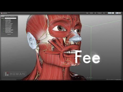 7 Resources for Teaching and Learning Anatomy and Physiology ...