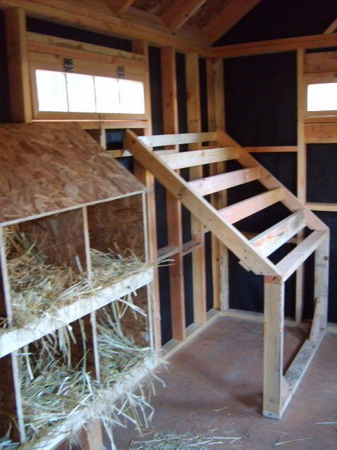 Combination Garden Shed Hen House Inside Chicken Coop Chicken Diy Building A Chicken Coop