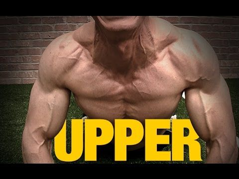 best upper chest exercise without equipment  youtube