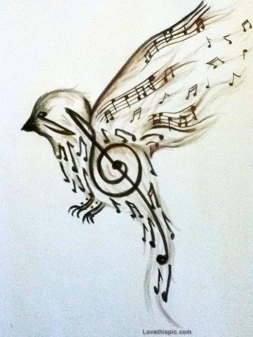 song bird music art bird drawing notes sing sketch