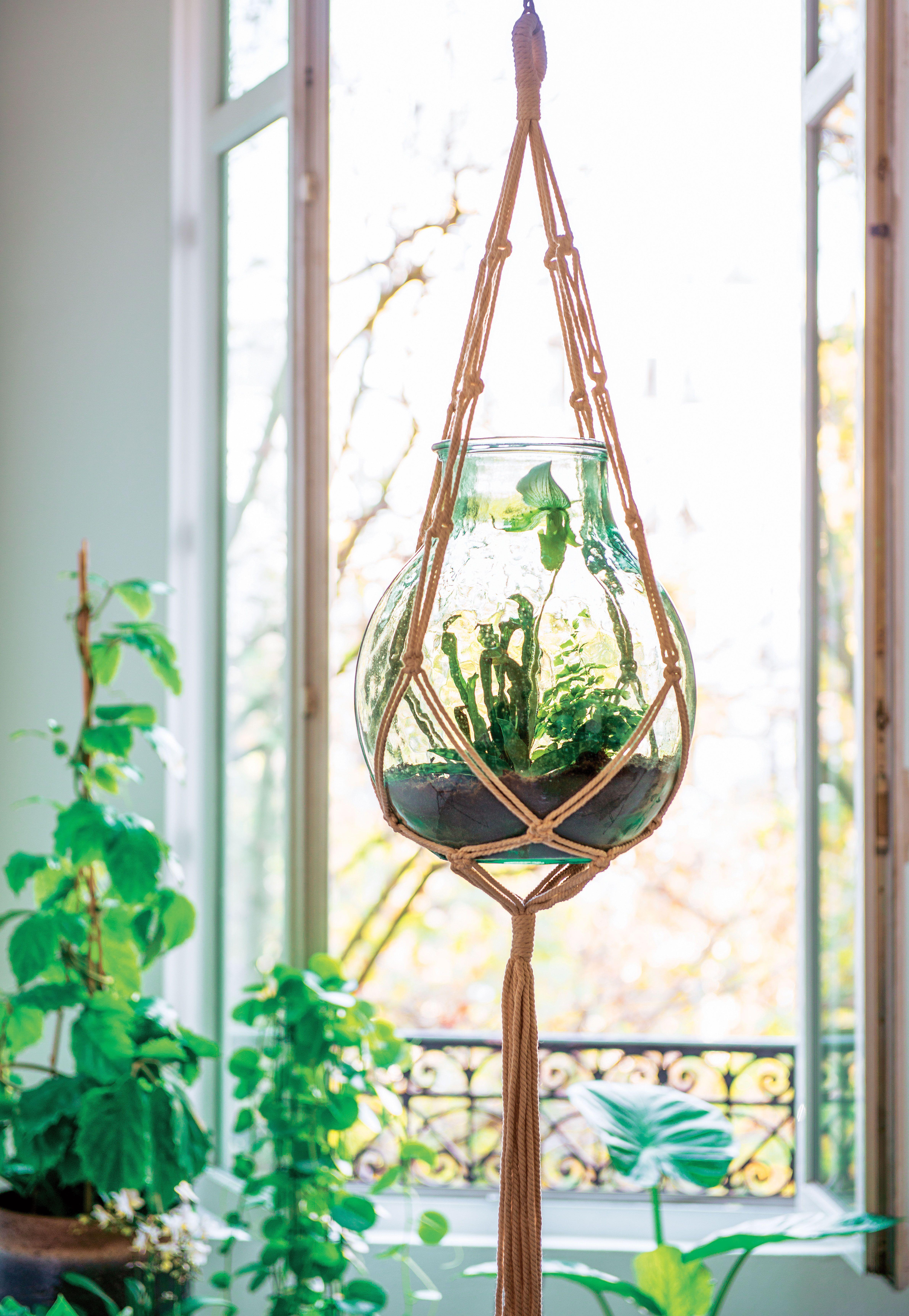 great green lab truffaut mini jardin suspendu u macram with bain de soleil truffaut. Black Bedroom Furniture Sets. Home Design Ideas