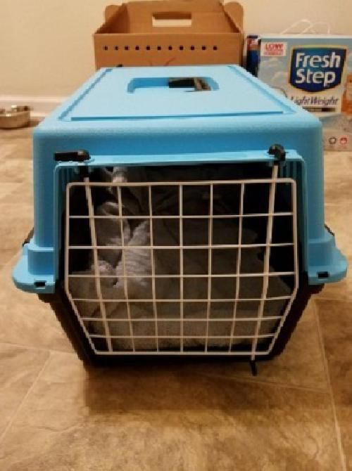Pet Cat Puppy Carrier Travel Cage Crate Portable Cat Dog Sling