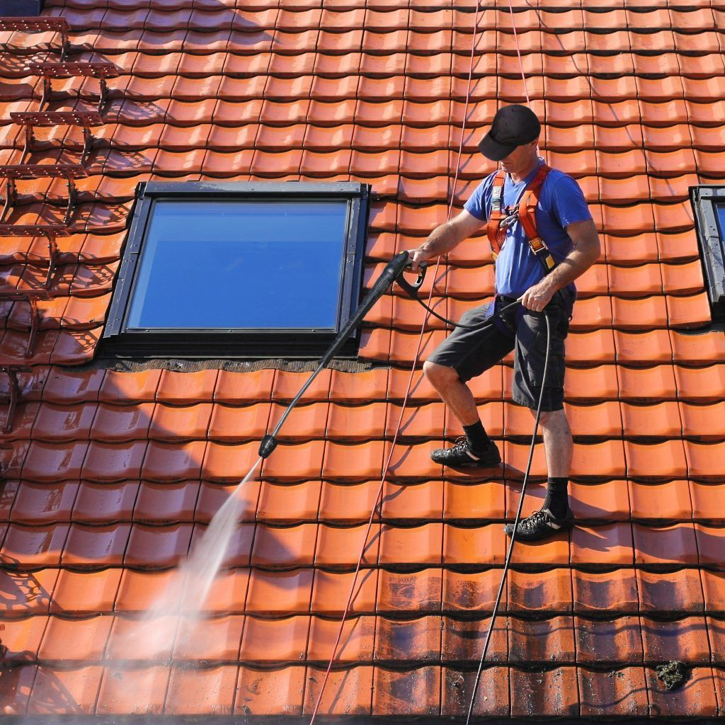 Algae, Fungus, or Moss? Time for Roof Cleaning Roofers