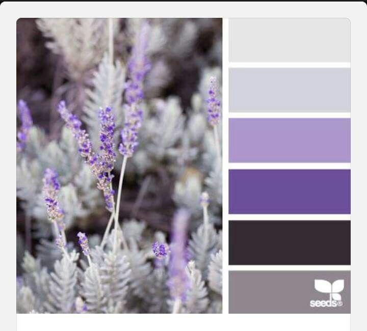 Purple Gray And White Bedroom: Purple Grey White Color Scheme