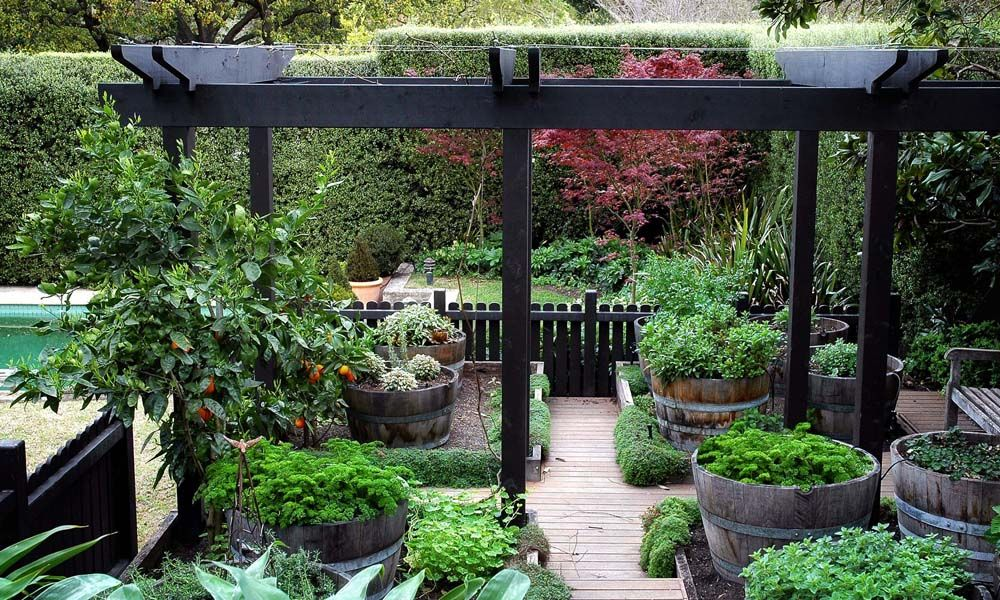 Man Cave Urban Garden : Eckersley garden architecture great use for barrels in raised
