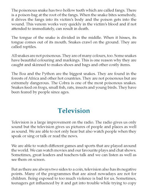 7th Grade Descriptive Essay Sample English Writing Skill Youth Violence Essays