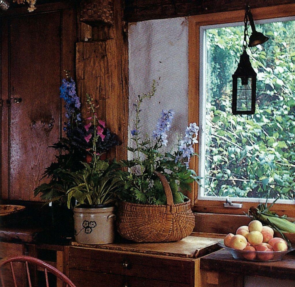 Summer photo in front of kitchen window.