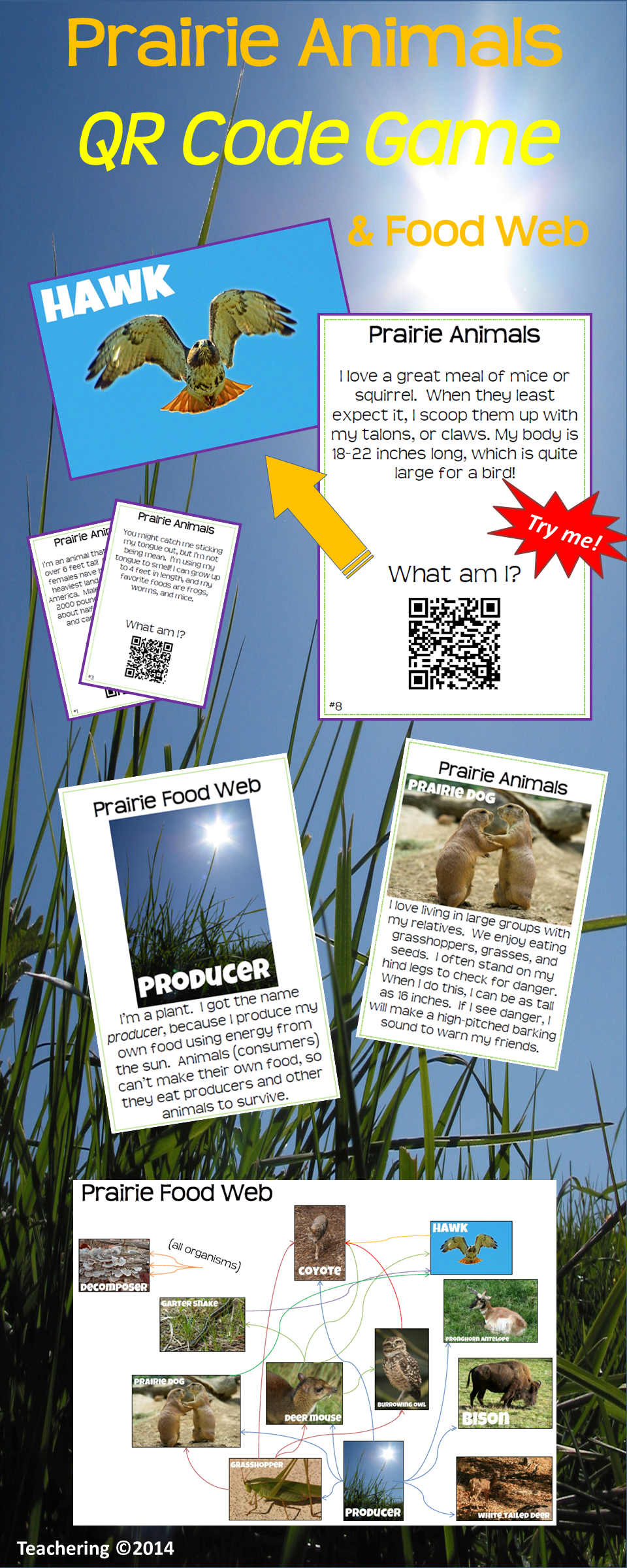 Prairie Ecosystem Task Cards with QR Codes & Food Web