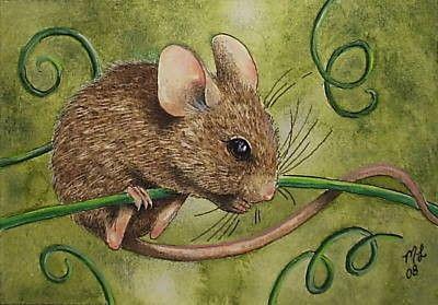 10 Der Erlose Aus Dieser Kunst Gehen Auf Tierische Liebe Plus Free Us Shipping Dies Ist Eine Miniatur Kunstdruck Eines Susse Maus Maus Illustration Tierkunst