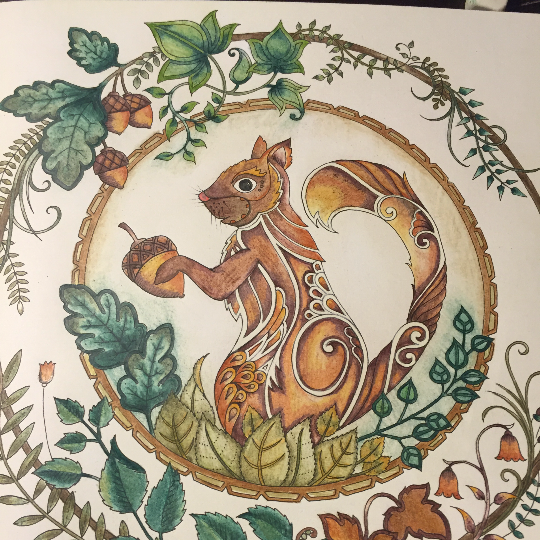 Take A Peek At This Great Artwork On Johanna Basfords Colouring Gallery Find Pin And More Enchanted Forest Coloring