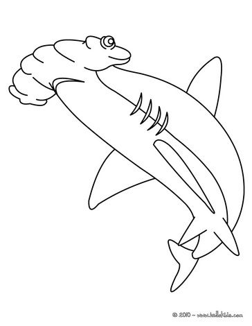 Hammerhead shark coloring page summer camp sea for Hammerhead shark coloring pages