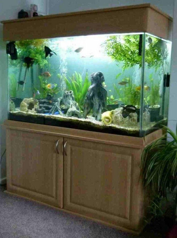 Home Aquarium Design Ideas: 21 Best Aquascaping Design Ideas To Decor Your Aquarium