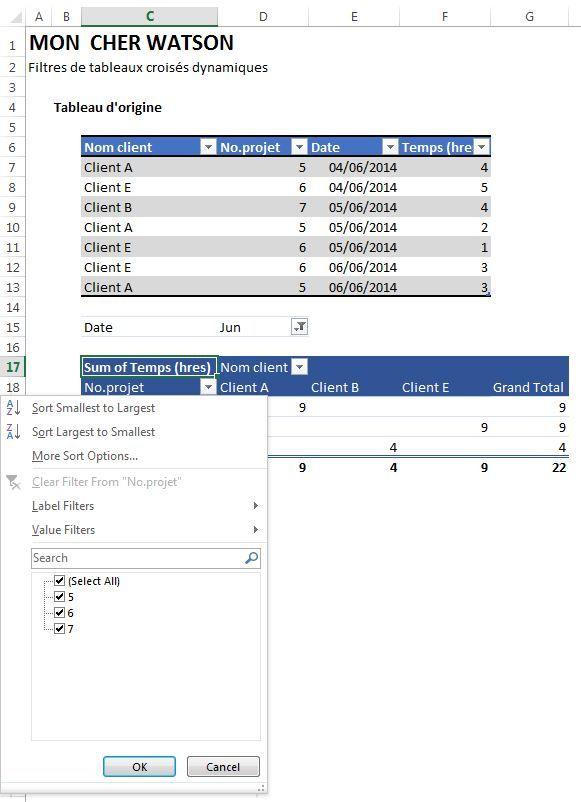 Excel Probleme De Filtre Dans Les Tableaux Croises Dynamiques Excel Screenshots