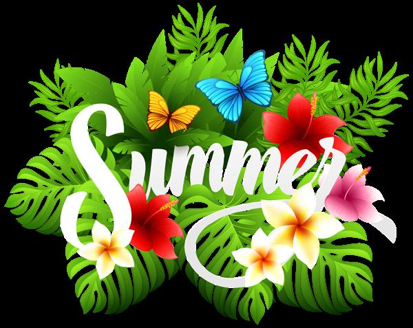 Summer Decorative Image PNG Clipart Flores, Dibujos