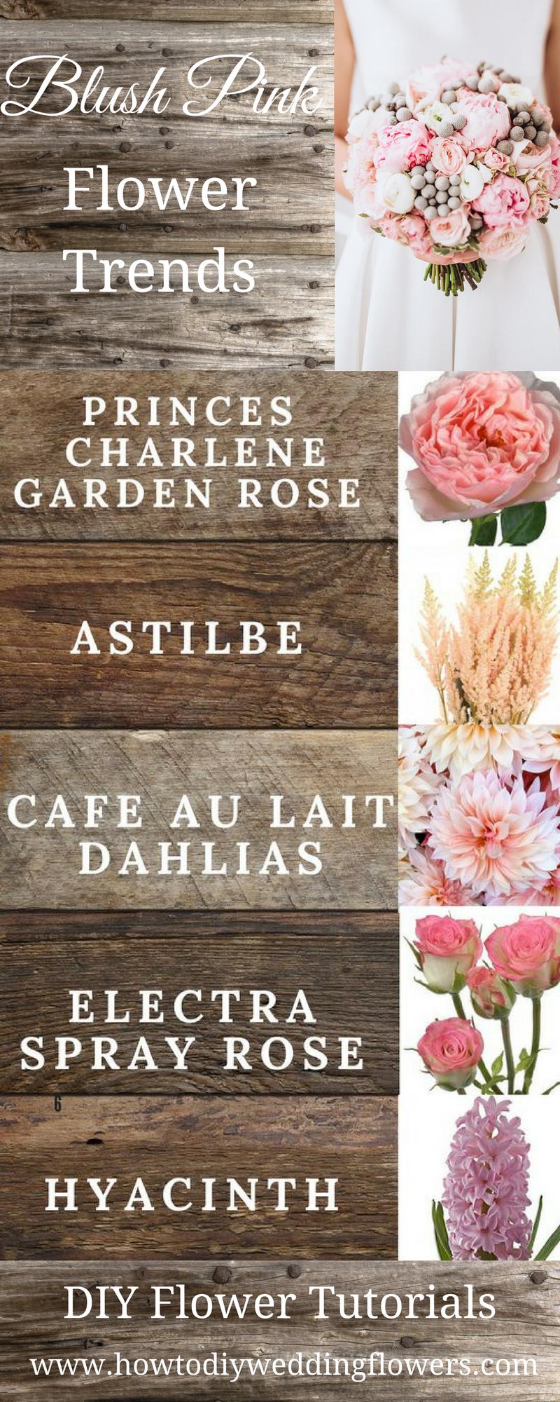 Anastasia stevenson wedding planner diy wedding flowers ideas