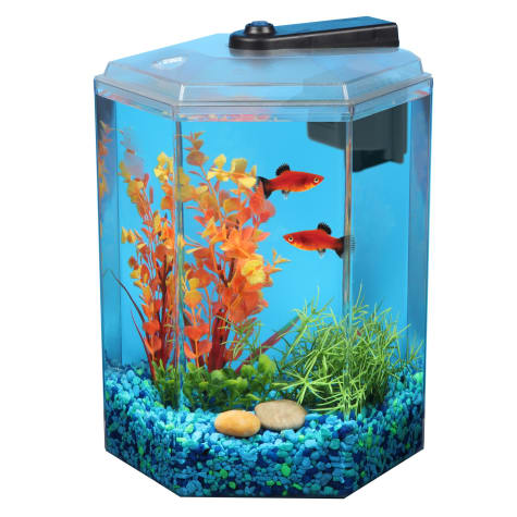 Imagitarium 1 7 Gallon Hexagonal Aquarium Petco In 2020 Aquarium Petco Fish Tank