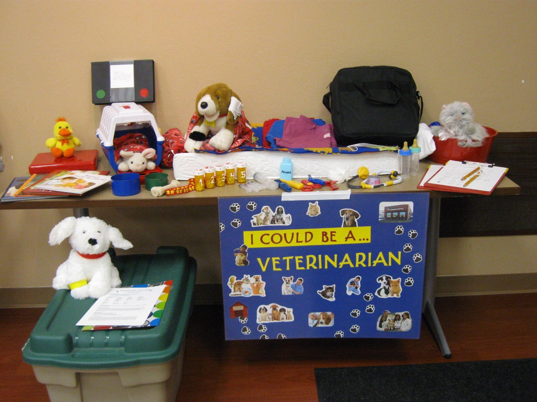 Veterinarian Prop Box With Images Prop Box Dramatic Play Area