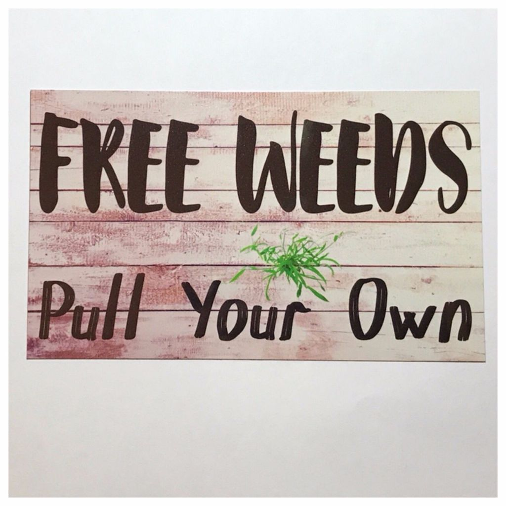 Tin Wall Plaques Free Weeds Garden Sign Gardening Tin Wall Plaque Or Hanging