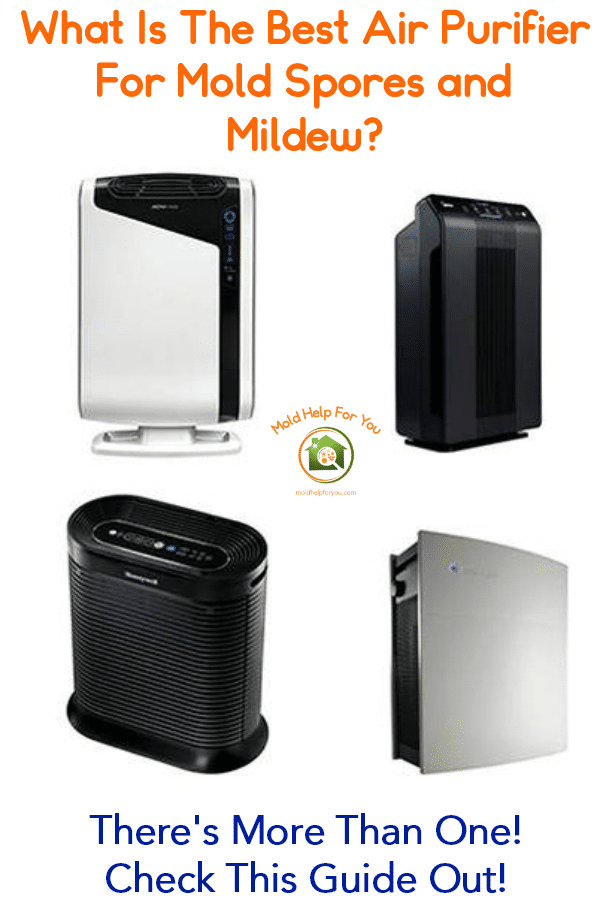 What is the best air purifier for mold spores and mildew