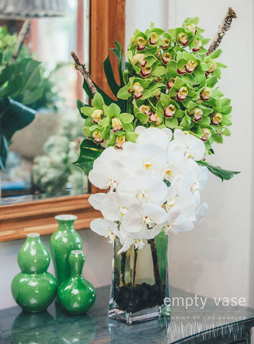 Celeste orchids pinterest west hollywood orchid and local florist