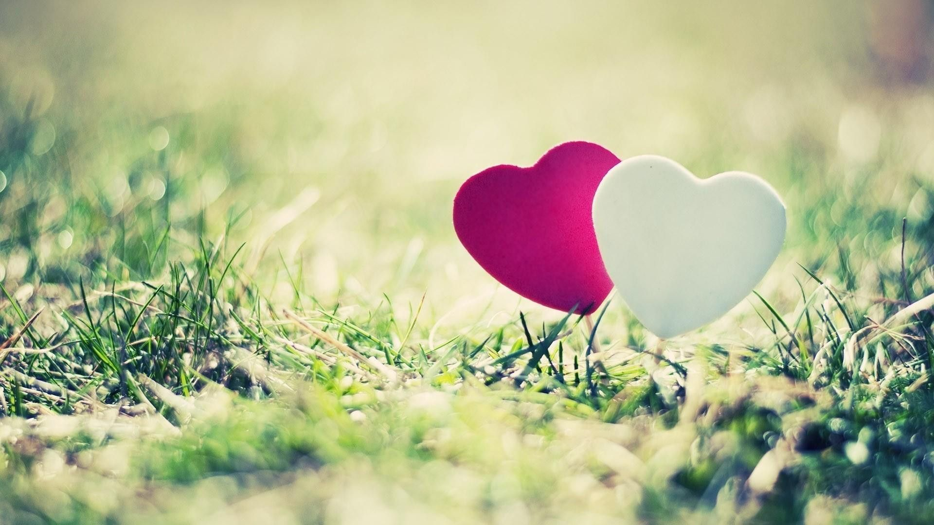 Love Wallpapers 55 Top Free Love Hd Wallpaper For Mobile Phone Love Wallpaper Love Wallpaper For Mobile Love Wallpaper Download