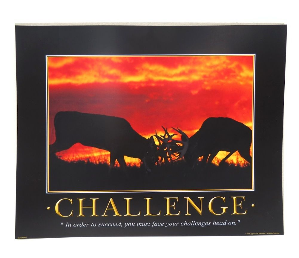 `CHALLENGE` Bucks Battling at Sunset 11 x 14 Print