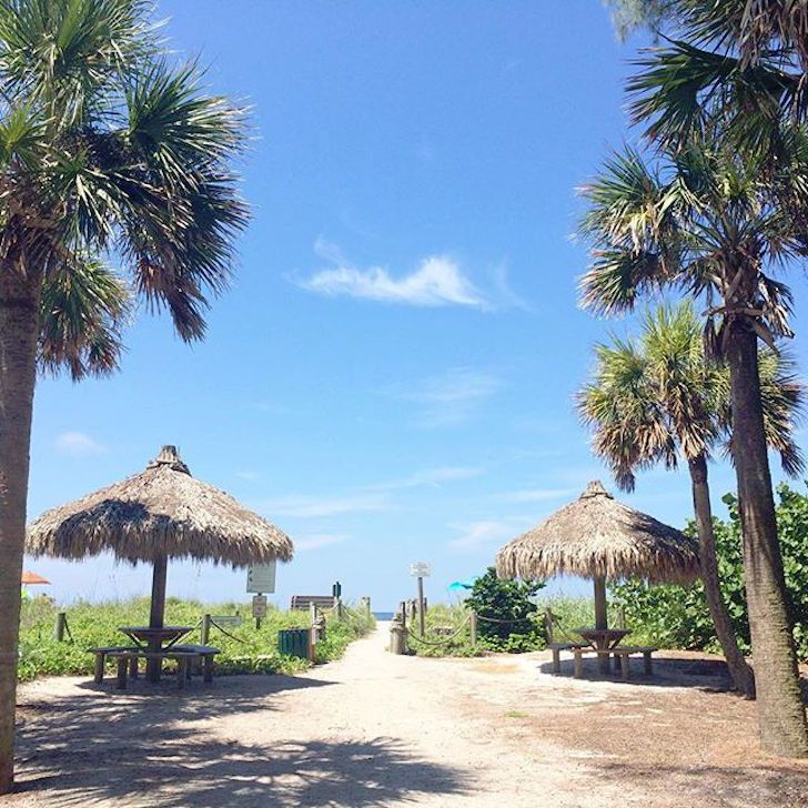 Turtle Beach Campground Has Free Wi Fi 27 Best Camping Spots In Florida